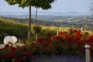 Traumhafte Aussicht im Hotel & Spa Larimar am Sonnenhügel von Stegersbach