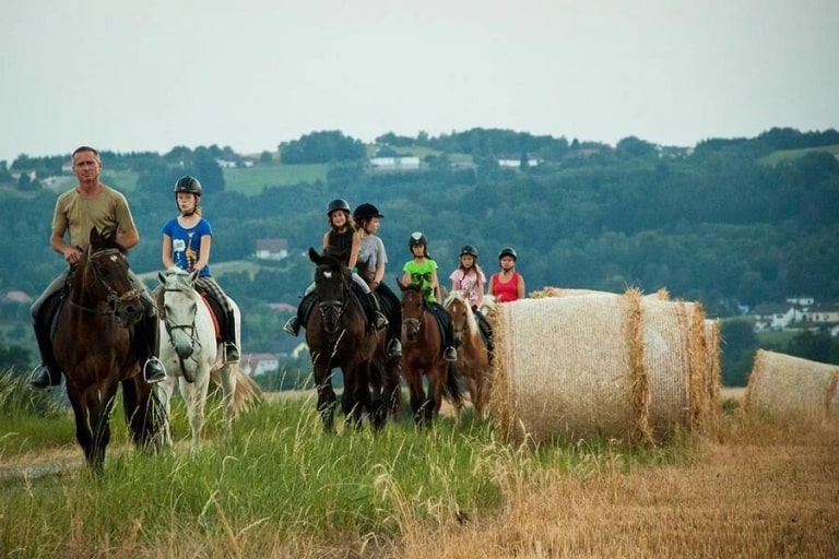 Reiten im Burgenland