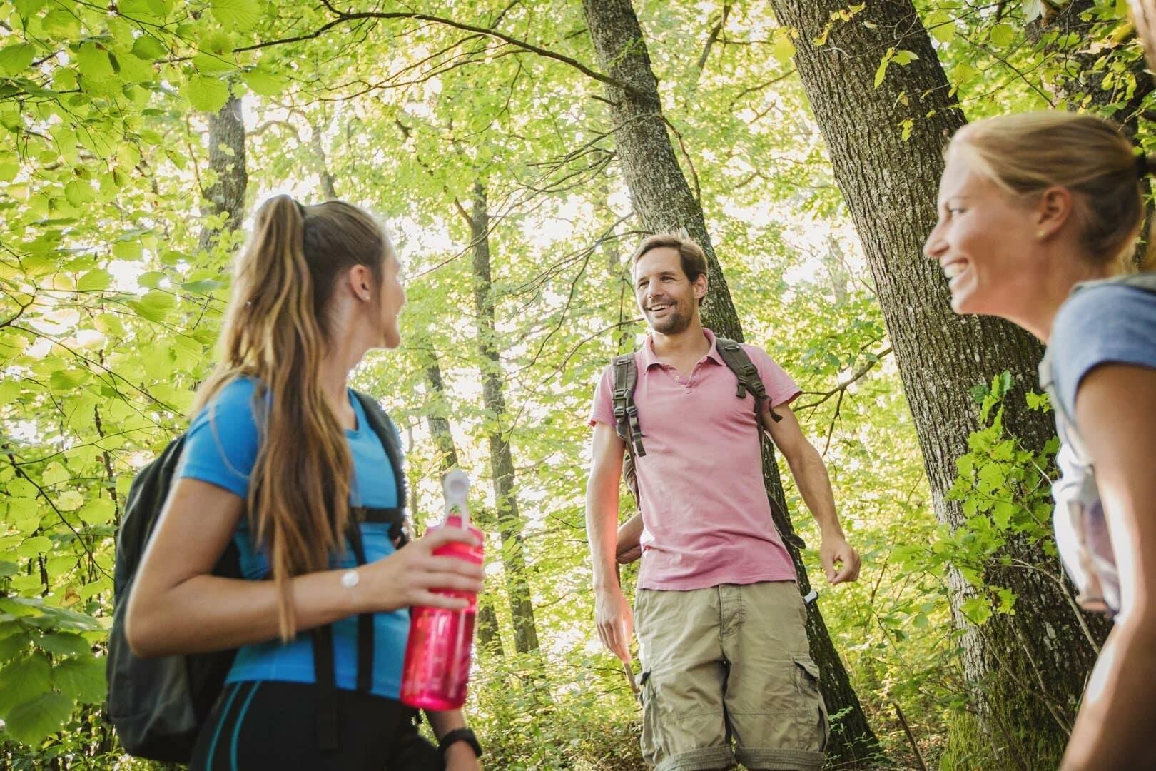 Wandern in den Wäldern des Südburgenlandes