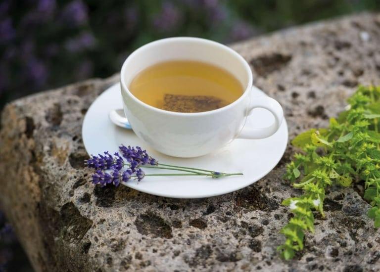 Detox-Tee zum Entschlacken im Hotel Larimar